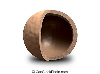 A hollowed out macadamia nut shell with a quarter segment cut away