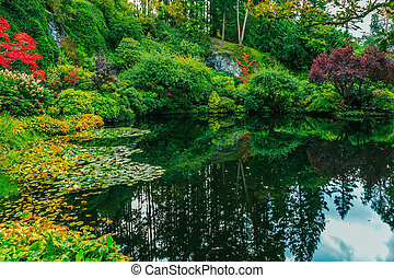 In a small pond reflected sky - Delightful landscaped and ...