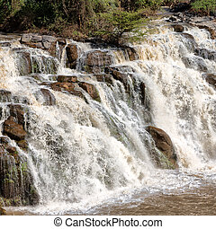 in africa the national park and the falls nature wild
