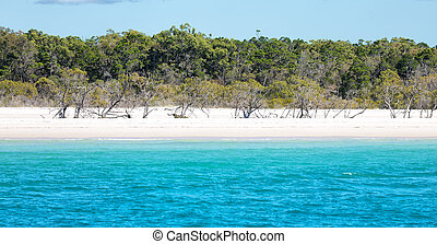 the view from a boat of the beautiful beach