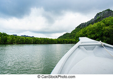In boat shot of river cruise in Kilim Park Langkawi