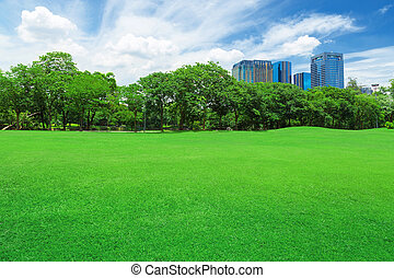 In city parks, lawns
