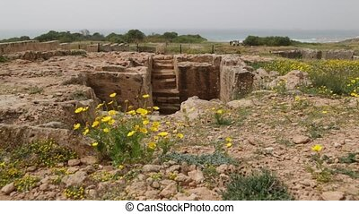 in cyprus paphos the antique historical site ruins and...
