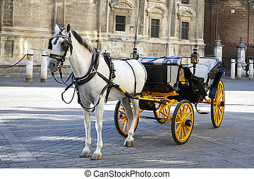 White horse and traditional tourist carriage in Sevilla - In...