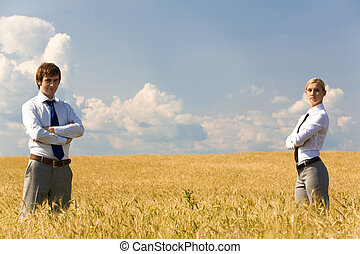 in, il, campo frumento