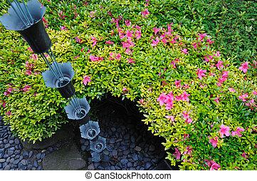 in japanese garden