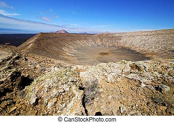in los volcanes volcanic timanfaya rt flower bush - in los...