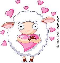In love sheep