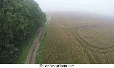 In misty morning landing drone on rural gravel road near...