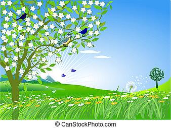 in, primavera