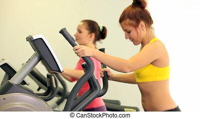 In sport gym