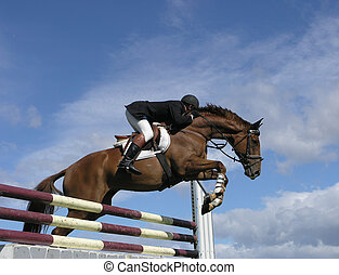 In the Clouds - A horse clearing a jump. Taken at the Horse...