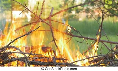 In the forest a big fire burns.