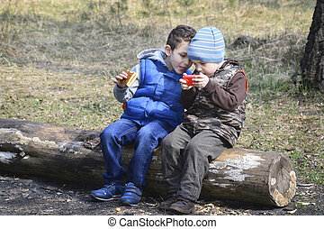 In the forest, sitting on a log, two boys, one playing with a to