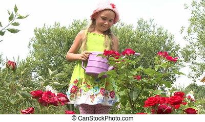 in the garden   - Little girl watering flowers in a garden