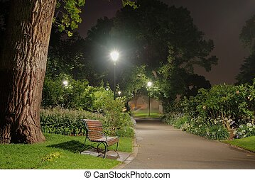In the park at night