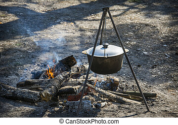 In the spring, a bowler hat on the fire in the forest.