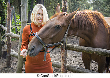 In the summer afternoon at the farm, a girl sits on a fence and feeds a foal.