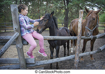 In the summer afternoon on the farm, a girl feeds a mare with a foal.