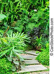 In the tropical garden