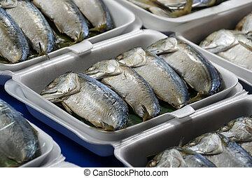 in umido, golfo, fish, tailandese, scombro, mercato