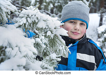 In winter, snow-covered pine forest a boy standing .