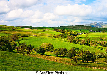 In Yorkshire Dales National Park in Great Britain