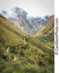 Inca Trail Path