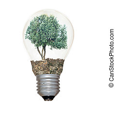 Incandescent light bulb with a tree as the filament