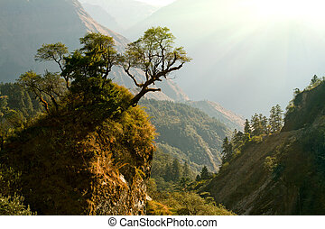 incantato, nepal, paesaggio