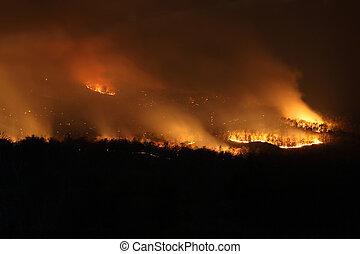incendio descontrolado, bushfire, noche