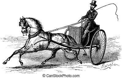 incisione, 2-wheeled, vendemmia, carrello, singolo, disegnato, cavallo