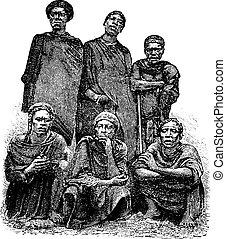 incisione, centrale, congo, vendemmia, uomini, africa, ...