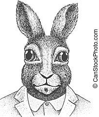 incisione, coniglio, illustrazione