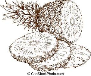 incisione, illustrazione, ananas