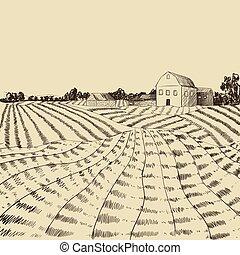 incisione, stile, vettore, coltivatori, casa fattoria, illustrazione, mano, scena, fondo, field., incidere, disegnato, agricoltura, paesaggio