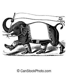 incisione, vendemmia, bandiera, stivali, elefante
