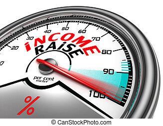 income raise conceptual meter