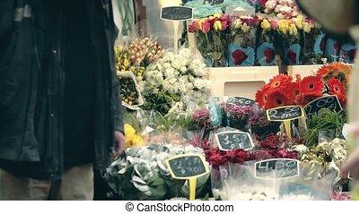 inconnu, pays-bas, vendeur, fleur, amsterdam