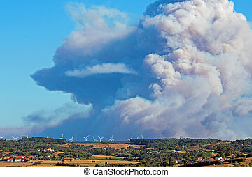 Incredible bush fire at the southcoast in Portugal