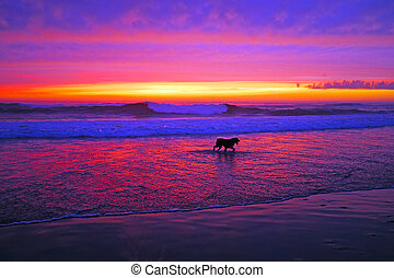 Incredible sunset at the ocean