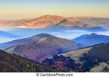 Incredibly beautiful morning of a misty autumn dawn in the mountains I