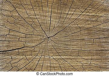 incrinature, knots., legno, su, struttura, superficie, fondo, chiudere