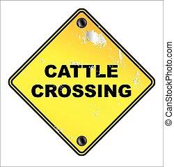 incrocio, bestiame, segno giallo