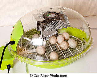 Incubator - Small modern incubator for various egg sizes...