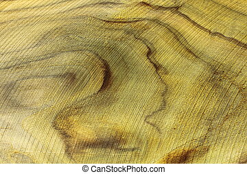 Indentation of saw - The beautiful pattern  from nature.