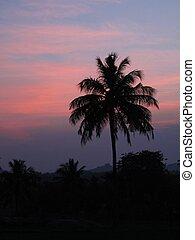 india, avond, hemel, kleurrijke, hampi