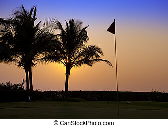 Goa. A sunset over palm trees and