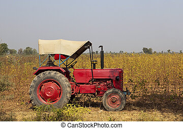 indian agriculture - agricultural landscape with a red...