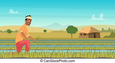 Indian agriculture working. Farmer harvesting in field asia vector background in cartoon style